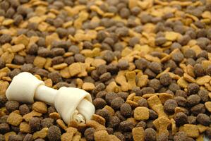 Dried Meat Protein to use in Dry Pet Foods